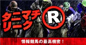 俺の競馬予想 有料コンテンツ(タニマチ・リークR)