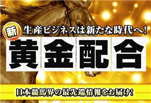 俺の競馬予想 有料コンテンツ(新・黄金配合)
