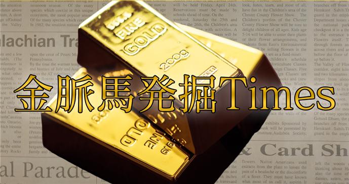 スタンダードタイムズ|金脈発掘Times