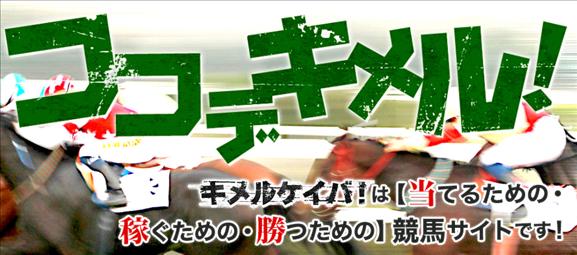 ココデキメル! キメルケイバ!は【当てるための・稼ぐための・勝つための】競馬サイトです!