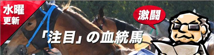 血統シックス 「注目」の血統馬
