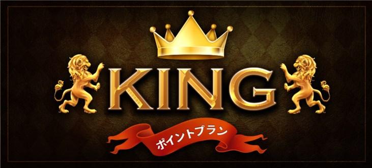 ホライズン 有料予想プラン(KING)